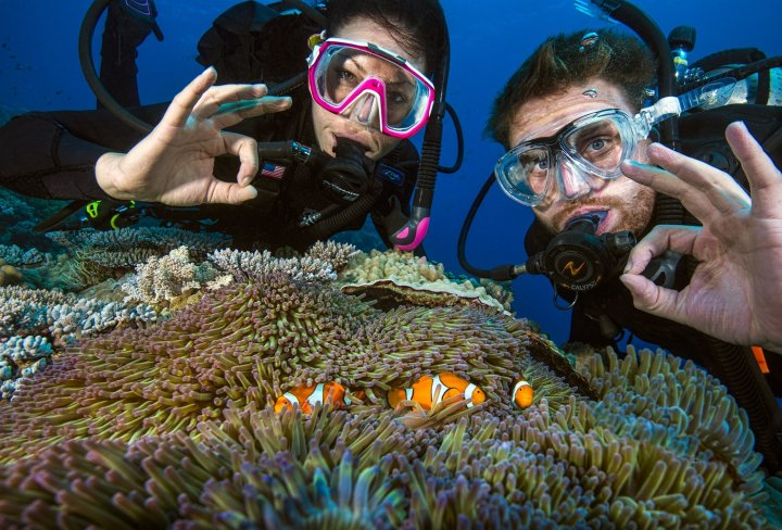 Diving Courses on the Great Barrier Reef